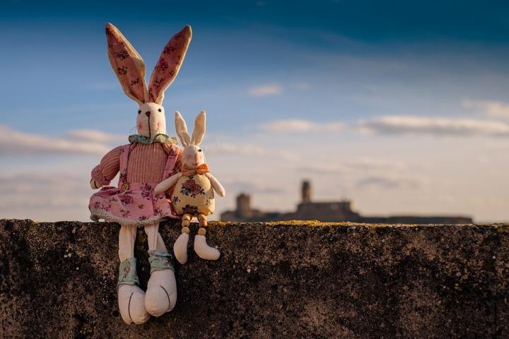 rabbit-1158594_960_720